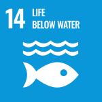 Life below Water Causes