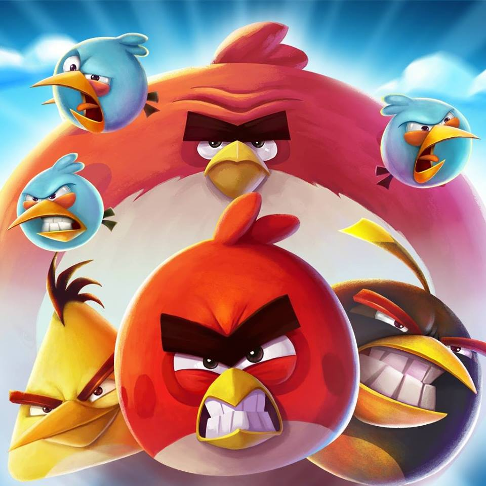 Angry Birds Outlet | Kids