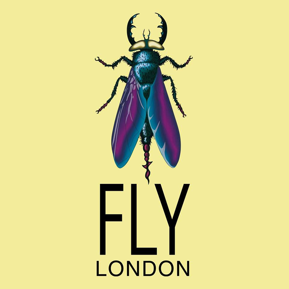 Fly London | Women